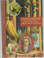"""ENCYCLOPEDIE Du Livre D'or Pour Garçons Et Filles  Livre 2 """" ARGENTINE à éditions Des Deux Coqs D'or  1960  192 P - Encyclopédies"""