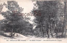 """(33) Soulac Sur Mer - Une Allée En Forêt Vers L'Amélie """" Les Sables D'Argent"""" - 2 SCANS - Soulac-sur-Mer"""