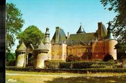 CPM  SEMUR EN VALLON      Le Chateau - France