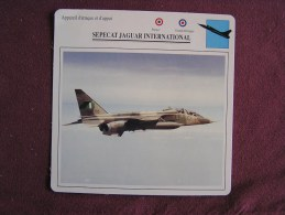 SEPECAT JAGUAR INTERNATIONAL    FICHE AVION Avec Description  Aircraft Aviation - Vliegtuigen