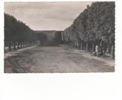 Carte Postale De Berthecourt -la Place- Véritable Photo Au Bromure - Francia