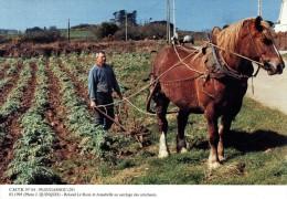 PLOUGASNOU 29, Roland Le Roux Et Annabelle Au Sarclage Des Artichauts, 03/1995 - 400ex - Cultures