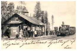 Lapland Polcirkeln Rain Station With Train, - Stations With Trains