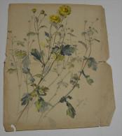 De La Collection Cyrill Riedel Sur Papier 80 Grs, Datée Vers 1890, Format 33x27 - Pastels