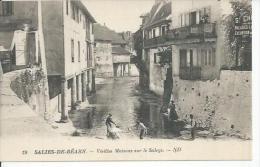 19 - SALIES-DE-BEARN - VIEILLES MAISONS SUR LE SALEYS  ( Animées ) - Salies De Bearn