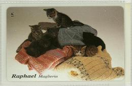 Carte Telefoniche: Raphael - Maglieria   - Nuova - Omaggio  - T - Polaroid - Italie