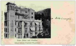 SUISSE-BRUNNEN-Eden Hôtel Und Pension-Précurseur Dos Non Divisé - Switzerland
