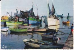 Francia--La Bretagne--Bateau De Peche Dans Un Port Bigouden- - Francia