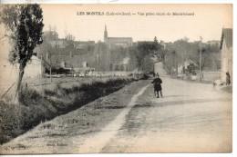41. Les Montils. Vue Prise De La Route De Montrichard - France