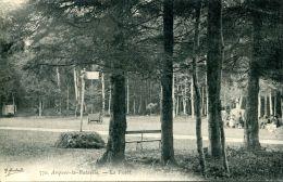 N°3134A -cpa Arques La Bataille -la Forêt- - Arques-la-Bataille