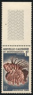 NOUV.-CALEDONIE 1959 - Yv. 291 ** SUP Bdf  Cote= 1,30 EUR - Poisson Brachyrus Zebra ..Réf.NCE22822 - Neukaledonien