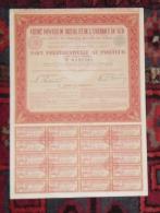 Action CREDIT FONCIER DU BRESIL ET DE L'AMERIQUE DU SUD Part Préférentielle 1906 - Banque & Assurance