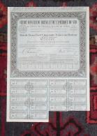 Action CREDIT FONCIER DU BRESIL ET DE L´AMERIQUE DU SUD Bon 250 Francs Au Porteur - Banque & Assurance
