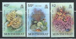 """Montserrat     """"Marine Life""""      Set    SC# 432-34   MNH** - Montserrat"""
