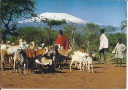 Masai + Kilimanjaro   (4041) - Tanzanie