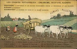 28 - MARBOUE - Carte Publicitaire - Engrais Potassiques - Maison Dumans-Pelletier à Marboué - Agriculture - France