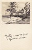 ILE MAURICE - BELLE MARE -  Meilleurs Voeux De Bonne Et Heureuse Année 1965 - Mauritius