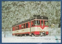 Yverdon Ste-Croix - Automotrice Be 4/4 N° 3 Dans La Forêt Aux Environs De Baulmes En Mars 1982 - Railway - Bahn - Trains - Trains