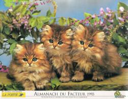 1993 CALENDRIER DES PTT  -  MAINE ET LOIRE - Calendriers