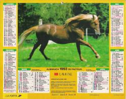 1993 CALENDRIER DES PTT  -  HERAULT - Calendriers