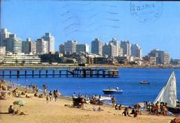 Uruguay - Punta Del Este - Playa Mansa - Formato Grande Viaggiata - Uruguay