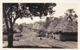 Panama Native Huts In Panama Real Photo