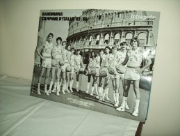 "Poster ""Bancoroma"" 1982/83 - Sport"