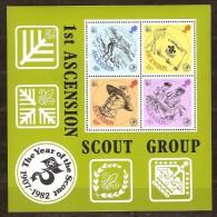 Ascension 1982 Yvertn° Bloc 13 *** MNH  Cote 6,75 Euro Scoutisme - Scoutisme