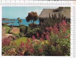 A  Roadside Garden On The Garrison,  ST  MARY'S  ,  Iles Of Scilly - Antilles Neérlandaises
