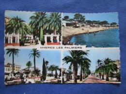 Hyeres Les Palmiers. Mar H93. Voyage 1958. - Hyeres