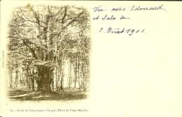 16.ed Decelle Precurseur -   Forêt De Compiègne  - Le Gros Hêtre 1901 - Compiegne