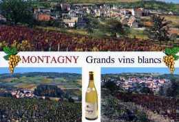 71  MONTAGNY LES BUXY , Vigne, Bouteille De Vin, Grappes De Raisin - France