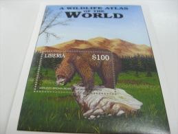 Liberia-Fauna-wild Animal-Endangered Animals-bear - Liberia