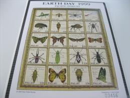 Palau-Fauna-Animals-Insects-Butterflies - Palau