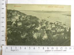 CPA Allemagne - Blankenese - Blick Vom Sulberg Auf Die Elbe - Blankenese