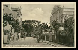 AMADORA - TEATRO - Um Trecho Da Avª Gago Coutinho ( Ed. Ferreira & Varanda) Carte Postale - Lisboa