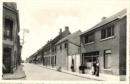 BELGIQUE - ANVERS - BORNEM - Nieuwe Kouterstraat. - Bornem