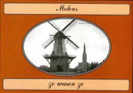 Boek: MOLENS ZO WAREN ZE - Door Ton Meesters. Mooie Uitgave Met Zeldzame Prentkaarten. Thema: Molen / Moulin / Mill - Histoire