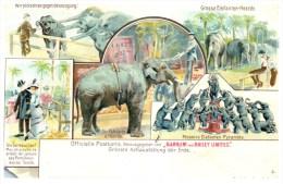 21919 Barnum And Bailey  Limited    Elephants - Circus