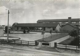 Zonhoven :  Rijkslagerde- En Middelbare Scholen  ( Groot Formaat  15 X 10 Cm ) Uig. Drukkerij Bongaerts - Zonhoven