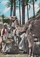 Libyen - Mercato Del Bestiame - Cattle Market - Old Stamp - Libyen