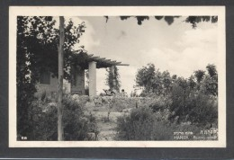 8778-HANITA(ISRAELE)-RESTING PLACE-1950-FP - Israel