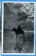 Q532, Ane Sur La Plage De Knokke - Zoute, Romantisme Maritime, Non Circulée - Ezels