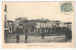 85 - LUÇON - La Place Des Acacias - 1906 - Lucon