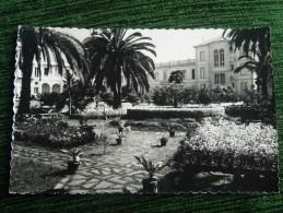 PUERTO DE LA CRUZ - Jardines Del Hotel Taoro - Tenerife
