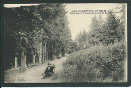 43. SAINT- BONNET- LE- FROID (HAUTE- LOIRE). ANIMEE..L´ ANCIENNE ROUTE DE TENCE..C1760 - France