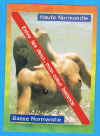 CPM Haute , Basse Normandie Entre Les Deux Mon Coeur Balance - Femme Seins Nus Dans L'eau , Breasts Nude - Fine Nudes (adults < 1960)