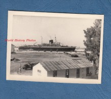 Photo ancienne - ALGERIE - Port � identifier - Beau bateau - Paquebot - Ann�es 1960