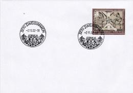 Switzerland - Special Cachet: 2002 Zweisimmen   (G59-12) - Svizzera