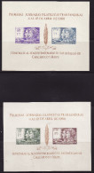 """Chile #C280 """"note"""" 2 S/Sheets F-VF Mint NH ** Battles - Chile"""
